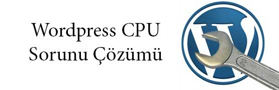 wordpress-cpu-sorunu-ve-cozumu