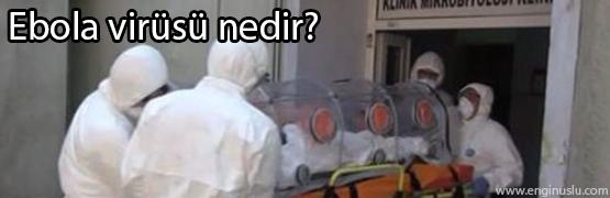 ebola-virusu-nedir